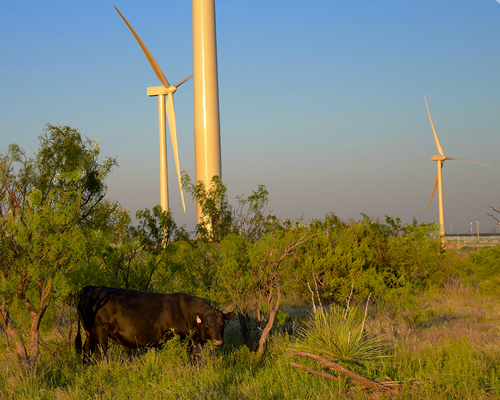 Tri Global Energy Holds On to Top Spot for Wind Projects in Texas for 11 Consecutive Quarters